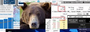 Call Bear Credit Spread